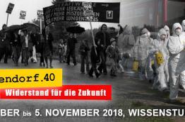 Volksabstimmung über das AKW Zwentendorf